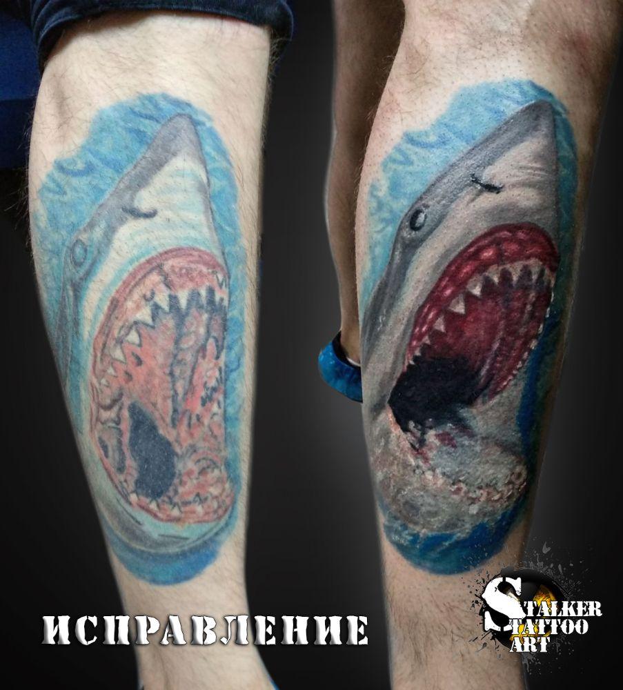 Студия Tattoo STALKER ART, фото №15