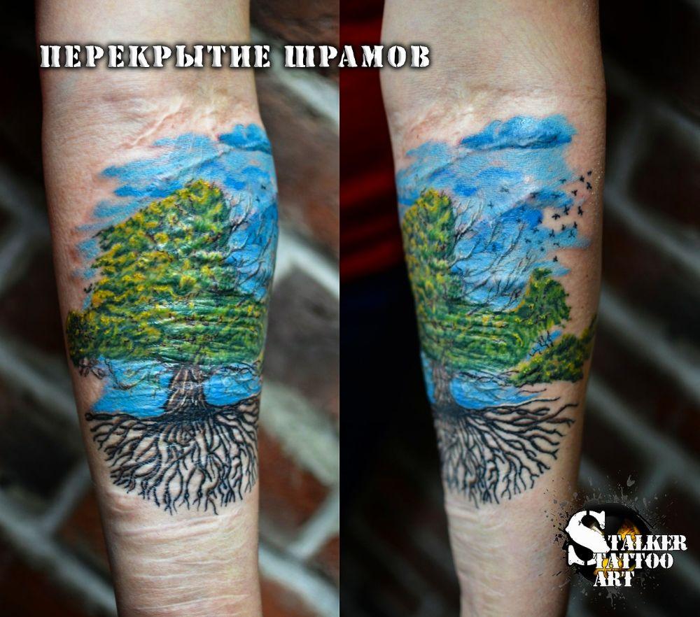 Студия Tattoo STALKER ART, фото №41